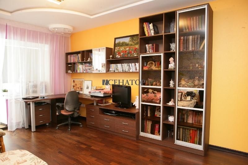 Книжный шкаф и полки
