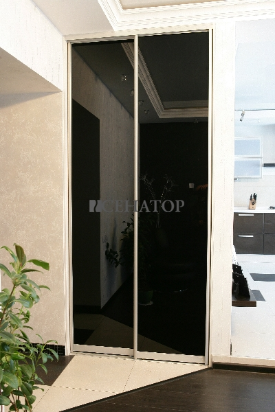 Двухстворчатый шкаф-купе с черным стеклом