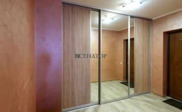 Встроенный шкаф с зеркалом  в коридор